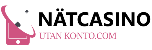 nätcasinoutankonto logo